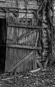 Western Ky Framed Prints - Black and White Barn Door Framed Print by Amber Kresge