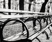 Benches Prints - Black and White Central Park Bench in New York City Print by Lisa Russo