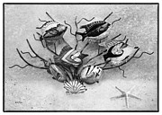 Tropical Fish Posters - Black and White Fish 2 Poster by Betty LaRue