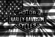 Chrome Mixed Media Prints - Black and White H-D Print by Todd and candice Dailey