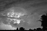 Storm Prints Photo Posters - Black and White Light Show Poster by James Bo Insogna