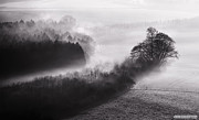 Simon Bratt Photography Acrylic Prints - Black and white mist landscape Acrylic Print by Simon Bratt Photography