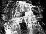 State Of Montana Prints - Black and White Morrell falls  Print by Kevin  Bartsch