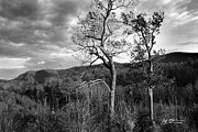 Asheville Photographs Prints - Black and White Oak Mountain Saluda NC Print by Jeff McJunkin
