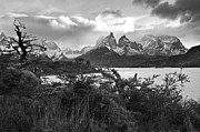 Paine Framed Prints - Black and white Patagonia Framed Print by Mircea Costina Photography