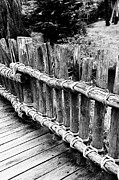 Ropes Framed Prints - Black and white photography of a wooden bridge 2 Framed Print by Falko Follert
