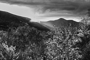 White River Prints - Black and White Sunset Print by Amanda Kiplinger