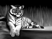 Xafira Mendonsa Prints - Black And White Tiger Print by Xafira Mendonsa