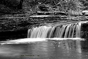 Carolyn Postelwait - Black and White Waterfall