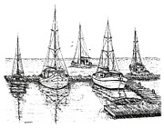 Sail Boats Drawings Posters - Black and White with pen and ink Drawing of The Berth Poster by Mario  Perez