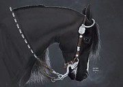 Black Horse Pastels Prints - Black Arabian Print by Heather Gessell