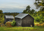 Stagnant Framed Prints - Black Barns Framed Print by Larry Helms