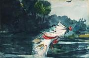 Winslow Homer - Black Bass