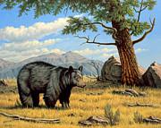 Black Bear Above Lamar Print by Paul Krapf