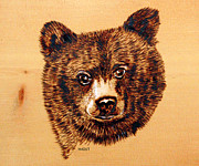 Woods Pyrography Framed Prints - Black Bear Cub Framed Print by Ron Haist