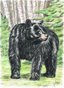 Joann Renner Art - Black Bear by Joann Renner