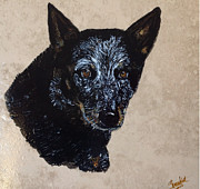 Heeler Paintings - Black Blue Heeler by Sharon Witt