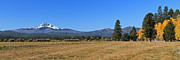 Black Butte Ranch Panoramic Print by Dave Olsen