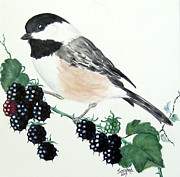 Sandra Maddox - Black-capped Chickadee...