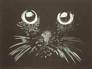 Blackandwhite Mixed Media Framed Prints - Black Cat Framed Print by Christopher Golding