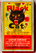 Fire Crackers Prints - Black Cat Fireworks Print by Gregory Dyer
