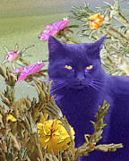 Alice Ramirez Framed Prints - Black Cat Lurking in the Portulaca Framed Print by Alice Ramirez