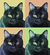 Black Cat Pop  Art Print by Susan Stone