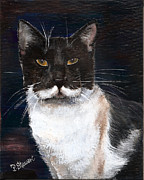 Tuxedo Cat Painting Framed Prints - Black Cat with White Mustache Framed Print by Penny Stewart