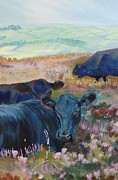 Sleeping Cows Prints - Black Cows on Dartmoor Print by Mike Jory
