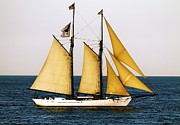 Vineyard Haven Prints - Black Dog Tall Ship Alabama Print by Jamie Greene