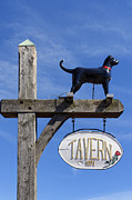 Vineyard Haven Prints - Black Dog Tavern Print by John Greim