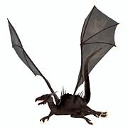 Corey Ford - Black Dragon