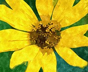 Museum Drawings Metal Prints - Black Eyed Susan Metal Print by Rosemarie E Seppala