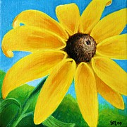 Sunflower Paintings - Black Eyed Susan by Sharon Marcella Marston