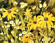 Black Eyed Susan Print Paintings - Black Eyed Susans in Field. by Laurie Rohner