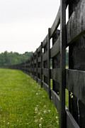 Edward Kay Art - Black Fence by Edward Kay