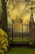 Ornamental Digital Art Metal Prints - Black Gate Metal Print by Svetlana Sewell