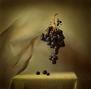 Rossen Nickolov - Black Grape