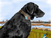Black Lab Digital Art - Black Lab Bird Dog by Lois  Ivancin Tavaf