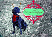 Black Lab Mixed Media - Black Lab Merry Christmas by Mindy Bench