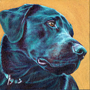 Gold Labrador Paintings - Black Lab on gold by Linda Evans Davis