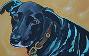 Soulful Eyes Paintings - Black Lab by Patti Schermerhorn