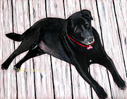 Lazy Dog Paintings - Black Labrador  by Barbara Griffin