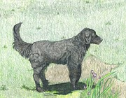 Black Lab Mixed Media - Black Labrador Retriever by Maricay Smeenk