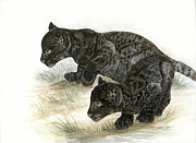 Leopard Print Paintings - Black Leopard Cubs by Marshall Bannister