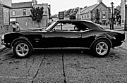 1968 Camaro Posters - Black Muscle monochrome Poster by Steve Harrington