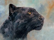 Black Leopard Framed Prints - Black Panther Framed Print by David Stribbling