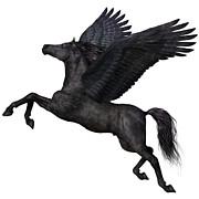 Corey Ford - Black Pegasus Profile