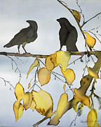 Black Ravens In Birch Print by Carolyn Doe
