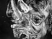 Rhinoceros Posters - Black Rhino Poster by Sharlena Wood
